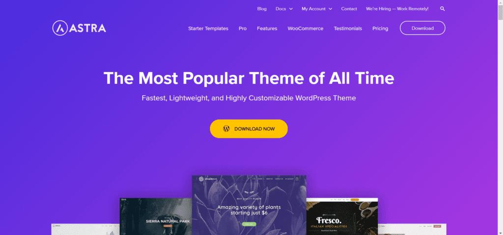 Best free directory theme WordPress - Astra